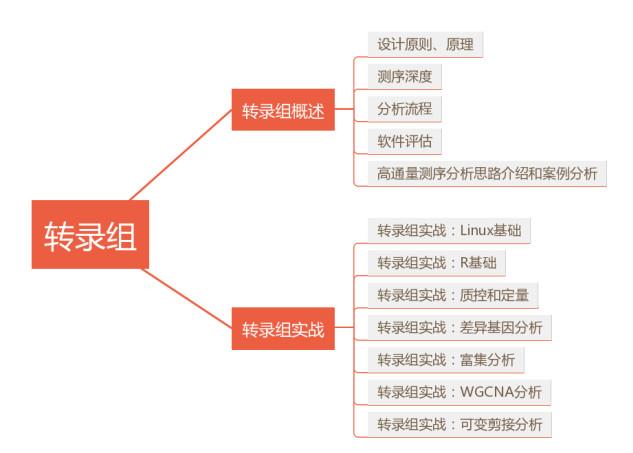 转录组课程框架